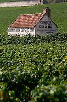 vineyard hut chambertin clos de beze dom p damoy gc gevrey-ch cote de nuits burgundy france