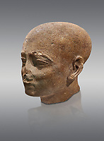 Ancient Egyptian statue shaved head of a priest, New Kingdom, 18th Dynasty, (1390-1353 BC). Egyptian Museum, Turin. Drovetti collection. Cat 3141. Grey background.