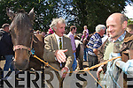 John D Myres and Billy Stout Barleymount, Aghadoe strike a deal at Kenmare fair day on Saturday.