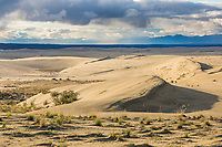 Landscape of the Great Kobuk Sand Dunes, with the Baird Mountains in the distance, Kobuk Valley National Park, Alaska.