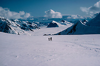 The Kahiltna Glacier in Alaska is the longest glacier in North America. Starting near 10,000 feet on the flanks of 20,320 foot high Denali, it flows almost 45 miles to its terminus. Here, two climbers returning from the summit of Denali descend the upper parts of the glacier. The poles mark safe passage through crevasses hidden by snow.