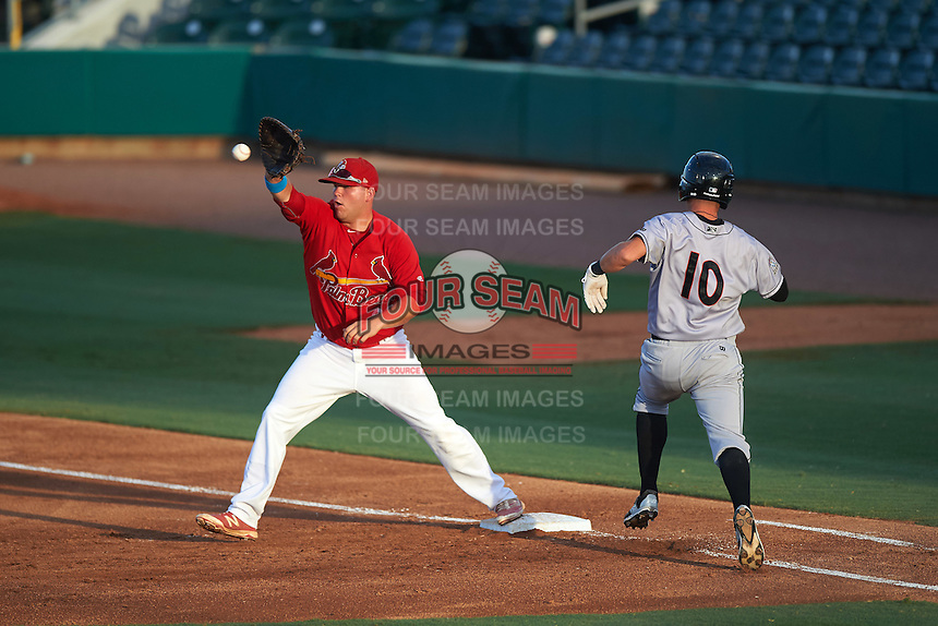 Palm Beach Cardinals first baseman Casey Grayson (29) stretches for a throw as Justin Bohn (10) runs to the bag during a game against the Jupiter Hammerheads  on August 12, 2016 at Roger Dean Stadium in Jupiter, Florida.  Jupiter defeated Palm Beach 9-0.  (Mike Janes/Four Seam Images)