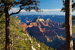 Grand Canyon view from the north rim