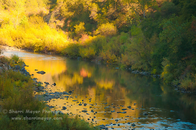 Fall along the North Fork of the American River, Auburn, California.