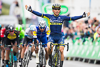 Picture by Alex Whitehead/SWpix.com - 08/09/2017 - Cycling - OVO Energy Tour of Britain - Stage 6, Newmarket to Aldeburgh - Orica Scott's Caleb Ewan celebrates the stage win.
