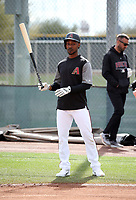 Jarrod Dyson - Arizona Diamondbacks 2018 spring training (Bill Mitchell)