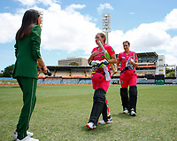 3rd November 2019; Western Australia Cricket Association Ground, Perth, Western Australia, Australia; Womens Big Bash League Cricket, Sydney Sixers verus Melbourne Stars; Alyssa Healy of the Sydney Sixers walks off after reaching her hundred and partnering in a record opening partnership of 199 with Ellis Perry - Editorial Use
