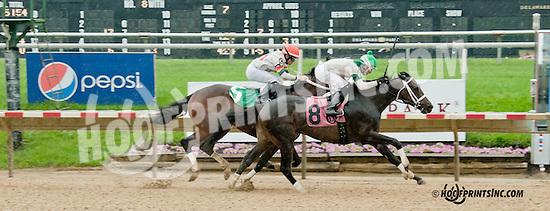 Atomic Orange Vet winning at Delaware Park racetrack on 6/19/14