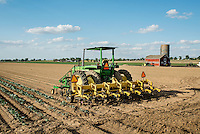 Tracktors and a barn at Sakata Family Farms in Brighton, Colorado, Thursday, June 19, 2015. Sakata Family Farms grows onion, barley, broccoli, sweet corn and cabbage.<br /> <br /> Photo by Matt Nager