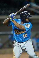 Yasiel Balaguert (12) of the Myrtle Beach Pelicans at bat against the Winston-Salem Dash at BB&T Ballpark on April 19, 2016 in Winston-Salem, North Carolina.  The Dash defeated the Pelicans 6-5.  (Brian Westerholt/Four Seam Images)