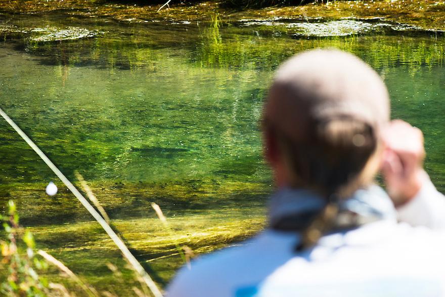 An angler eyes a brown trout on Big Sheep Creek near Dillon, Montana.