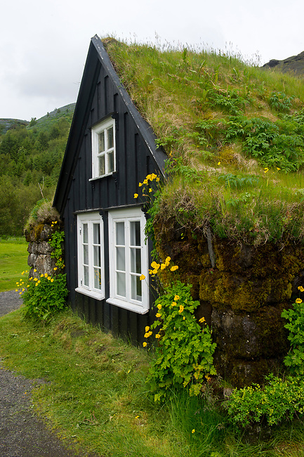 Traditional turf houses with Icelandic poppies at the Skogar folk museum in southern Iceland.
