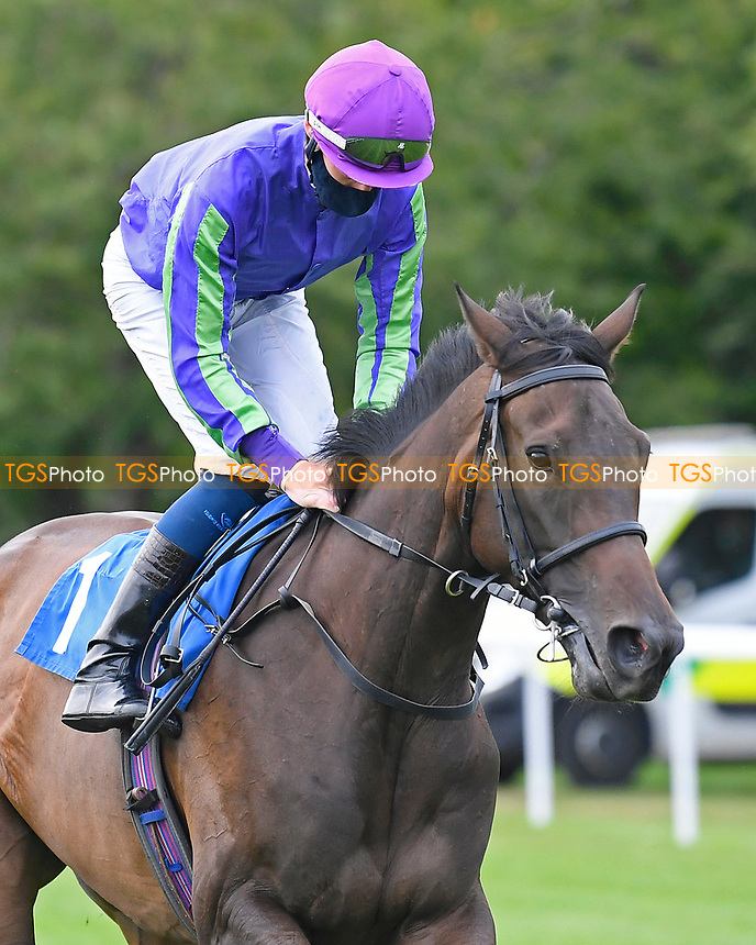 Riqaaby ridden by Daniel Muscutt goes down to the start of The British EBF Novice Stakes  during Horse Racing at Salisbury Racecourse on 11th September 2020