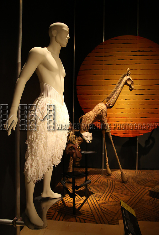 Swan Lake costume and 'The Lion King' costumes at Curtain Up: Celebrating the Last 40 Years of Theatre in New York and London Exhibition on June 14, 2017 at the New York Public Library for the Performing Arts at Lincoln Center.