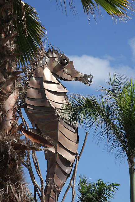 Close-up of Seahorse metal sculpture. Paseo Del Puerto, Old San Juan, PR