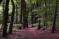 Park at Arnhem in Netherlands
