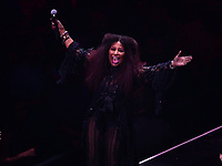 Brooklyn, NY - June 26, 2019: Grammy Award winning singer/songwriter Chaka Khan performs during the opening ceremony for NYC World Pride at the Barclays Center in Brooklyn, New York June 26, 2019.  (Photo by Don Baxter/Media Images International)