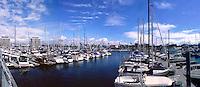 Marina Del Rey, Ca, marina, Boats, Docked, Los Angeles, Panorama