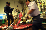 Japan - Fish market
