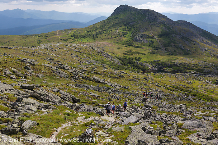 Group of hikers traveling along the Tuckerman Crossover Trail in Sargent's Purchase in the New Hampshire White Mountains on a cloudy summer day; this area is part of the Southern Presidential Range. Named after James Monroe, the fifth President of the United States, Mount Monroe is in view.