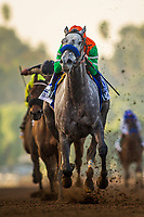 ARCADIA, CA - DECEMBER 26: Unique Bella # 3 with Mike Smith up  wins the La Brea Stakes at Santa Anita Park on December 26, 2017 in Arcadia, California. (Photo by Alex Evers/Eclipse Sportswire/Getty Images)