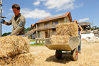 GERMANY, eco village Siebenlinden, building construction with straw bale and clay, behind straw bale house with sun collectors on the roof / DEUTSCHLAND, Oekosiedlung Siebenlinden in der Altmark, Baustelle eines neuen Wohnhaus aus Srohballen , Jugendliche transportieren Strohballen, Hintergrund fertiges Strohballenhaus mit Lehm verputzter Wand und Solarkollektoren auf dem Dach - Bürgerenergie, Buergerenergie