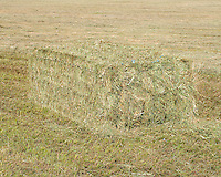 Bails of hay on the farm of Carl Trick in Cowdrey, Colorado, Sunday, August 23, 2015. As part of the 2015 Colorado Water Plan, the North Platte River Basin has called for the use of more irrigation and farming.<br /> <br /> Photo by Matt Nager