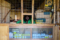 KENYA, County Bungoma, village Tongaren, AGROVET shop, selling of agricultural products like seeds, fertilizer, pesticides / KENIA, AGROVET Laden, Verkauf Saatgut, Tierfutter, Duenger, Medikamente fuer Tiermedizin