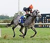 Silber Stern winning at Delaware Park on 10/6/12