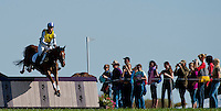 Madeline, with rider Holly Payne (USA), competes during the Cross Country test during the Fair Hill International at Fair Hill Natural Resources Area in Fair Hill, Maryland on October 20, 2012.