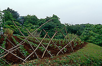 A large vegetable garden is situated to the rear of the house and is surrounded by traditional fencing made of simple branches