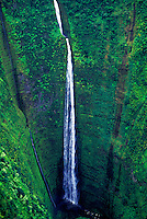 Waipio Valley waterfall cascades to pool beneath. Big Island