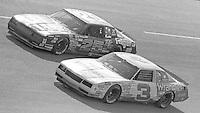 Dale Earnhardt(3) Tim Richmond (25) race side by side  Motorcraft 500 at Atlanta International Raceway in Hampton, GA on March 16, 1986.   (Photo by Brian Cleary/www.bcpix.com)