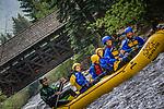 6/5/17 Sage - Gore Creek