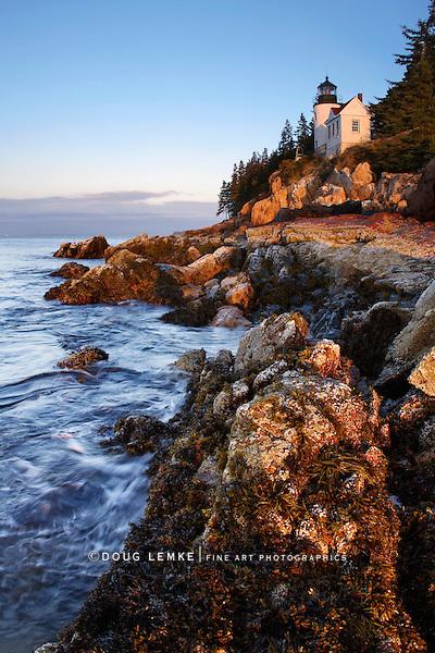 Bass Harbor Head Light At First Light, Acadia National Park, Maine