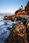 Bass Harbor Head Light At First Light, Acadia National Park, Maine
