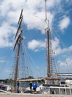 Segelschiff im Stadthafen von Rostock, Mecklenburg-Vorpommern, Deutschland