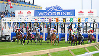 Joshua Tree (no. 8), ridden by Frankie Dettori and trained by Marco Botti, wins the grade 1 Canadian International Stakes for three year olds and upward on October 14, 2012 at Woodbine Racetrack in Rexdale, Ontario, Canada.  (Bob Mayberger/Eclipse Sportswire)