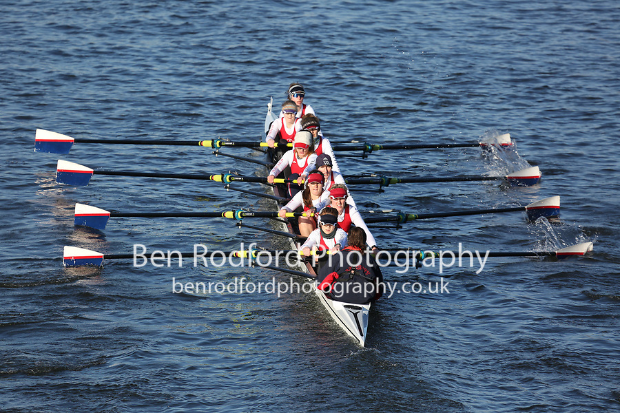Crew: 24   Agecroft Rowing Club   Age 1   W.8+ Band 1<br /> <br /> Head of the Trent 2018<br /> Division 3<br /> <br /> To purchase this photo, or to see pricing information for Prints and Downloads, click the blue 'Add to Cart' button at the top-right of the page.