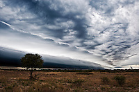 Black storm rolling in over kalahari pan