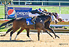 Im Still Arockstar winning at Delaware Park on 10/10/15