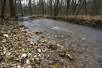 NWA Democrat-Gazette/FLIP PUTTHOFF <br /> Coler Mountain Bike Preserve in Bentonville offers scenic off-road biking and hiking. A stream flows during a hike Jan. 1 2019 at the park.