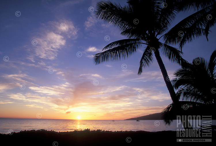 Sunset a North Kihei, Maui with palm trees.