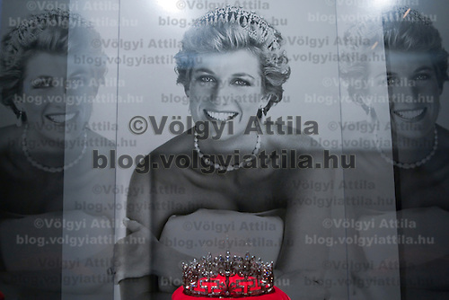 Diana a Celebration exhibition to remember the long died Diana princes.