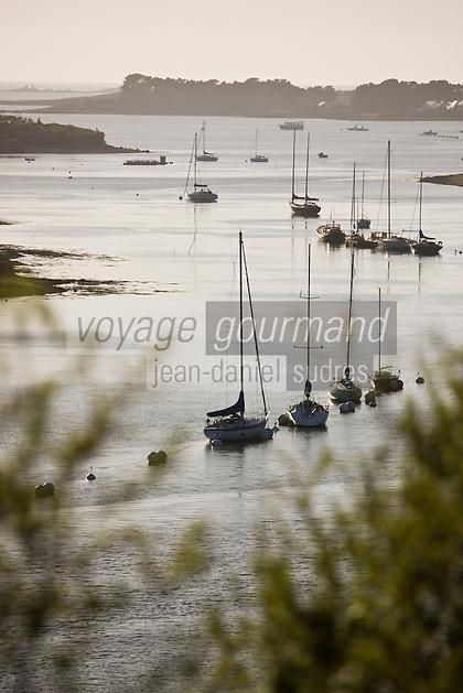 Europe/France/Bretagne/29/Finistère/ Env de Plouguernau: Vue sur l'Aber Wrac'h