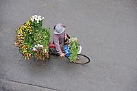 Flower seller - Hanoi, Vietnam