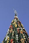 Bethlehem, Christmas tree in Manger Square