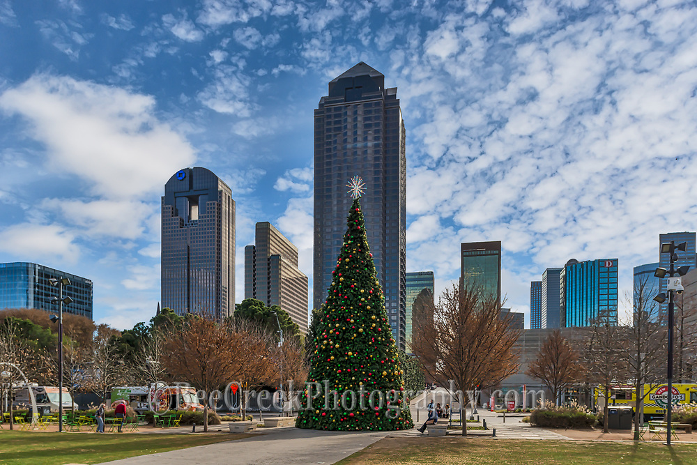 This is one of the Dallas Christmas Tree in the city park with the city skyline behind it on a cloudy day in downtown part of the city.