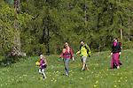 Paturages en  fleurs pr&egrave;s du lac de Roue(2695 m) entre Arvieux et Chateau Queyras<br /> Flowered high mountain pasture nearby Roue lake between Arvieux valley and Chateau Queyras valley