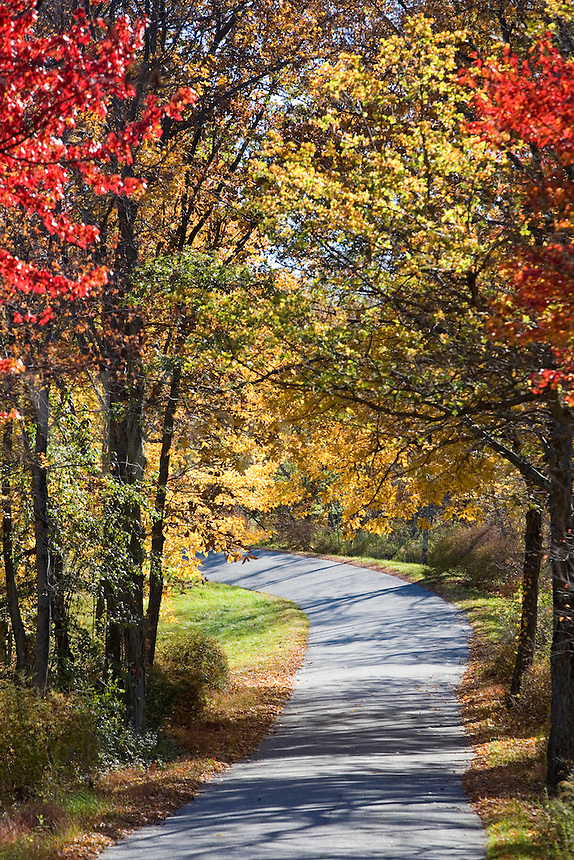 An empty road on an Autumn Day surrounded by the changing leaves and all the colors.